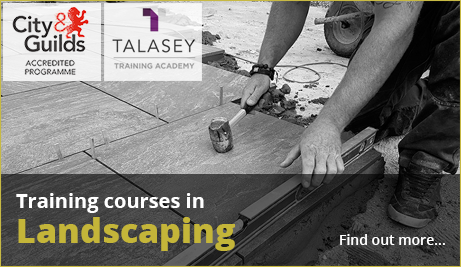 Introducing the Talasey Training Academy